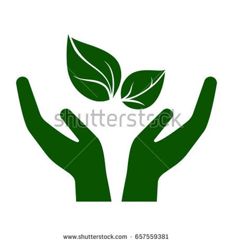Environmental Protection Agency Environment Essay Sample